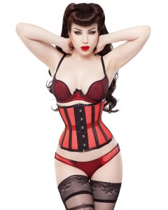 Playgirl Eve Red Net Mesh Cincher Corset With Black